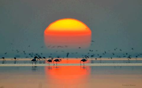 Denize Giren Güneş