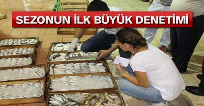 2 bin 300 kilogram balığa el konuldu