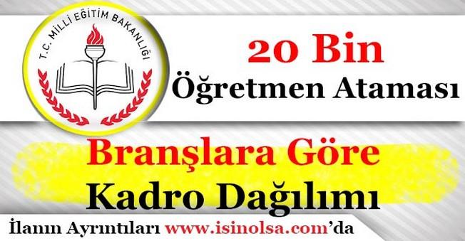 MEB 20 Bin Öğretmen Ataması Branşlara Göre Kadro Dağılımı Açıklandı!