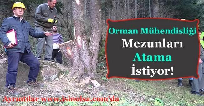 Orman Mühendisleri Atama İstiyor!