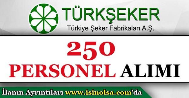 Türkiye Şeker Fabrikaları 250 Personel Alımı