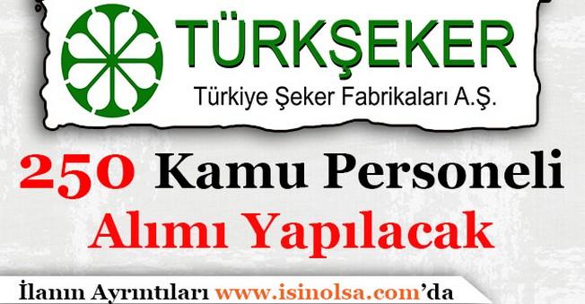 Türkiye Şeker Fabrikaları 250 Kamu Personeli Alacak