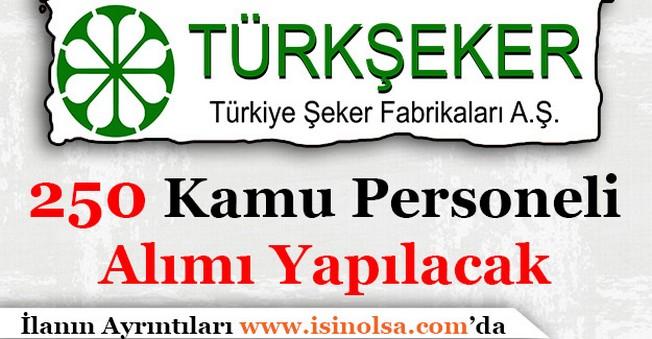 Türkiye Şeker Fabrikaları Anonim Şirketi 250 Memur Alımı Yapacak