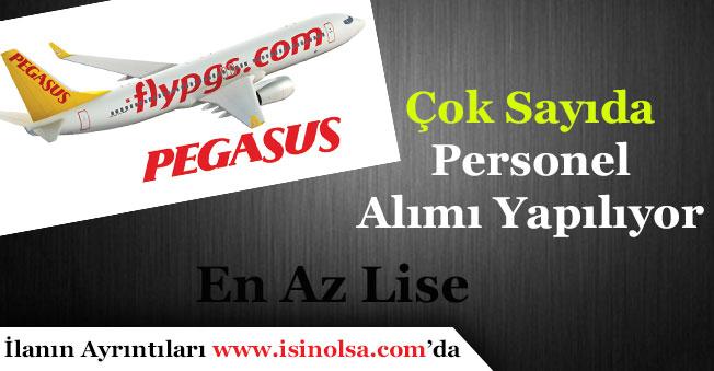 Pegasus Hava Yolları Çok Sayıda Personel Alımı Yapıyor! En Az Lise Mezunu