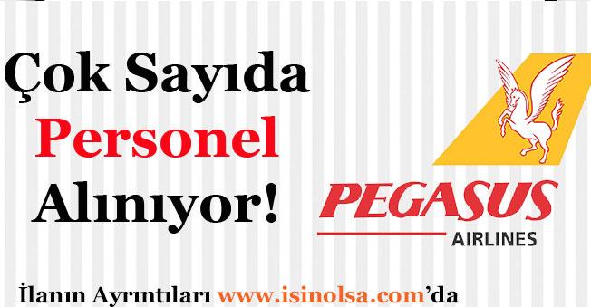 Pegasus Havayolu Firması Personel Alıyor!