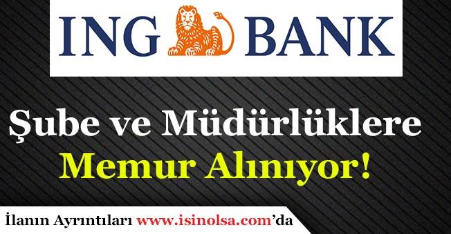 ING Bank Memur Alımı Yapıyor! Hangi Pozisyonlara Alım Yapılıyor