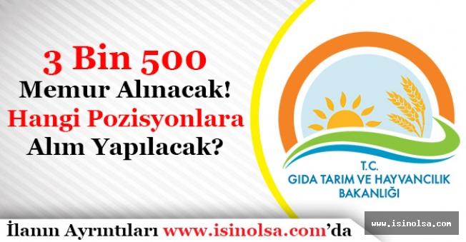 Tarım Bakanlığı 3 Bin 500 Memur Alacak! Hangi Pozisyonlara Alım Yapılacak?