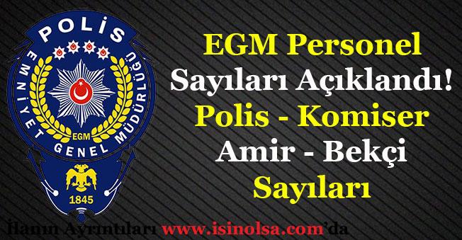 Emniyet Genel Müdürlüğü Personel Sayısı Duyuruldu! Toplam Polis ve Bekçi Sayıları Açıklandı