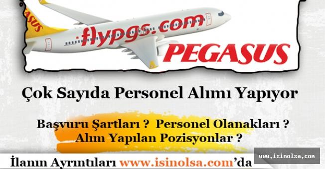 Pegasus Çok Sayıda Personel Alımı İlanı Yayımlandı.