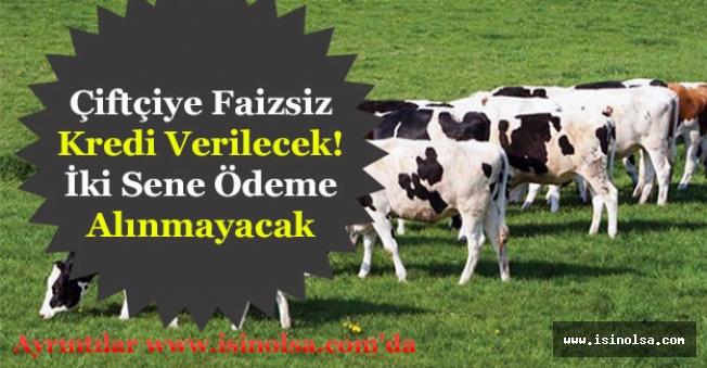 Bakan Müjdeledi! Çiftçiye Faizsiz Koyun ve Düve Ödemesi Desteği Verilecek!