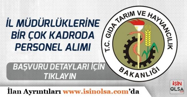 Tarım ve Orman Bakanlığı İl Müdürlüklerine İŞKUR Üzerinden Personel Alımı Yapılacak!