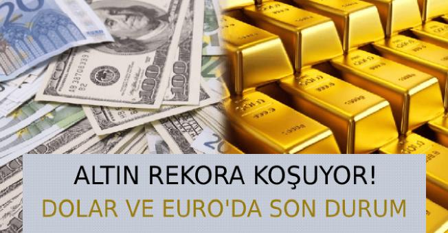 2019'un İkinci Haftasında Döviz Analizi (Dolar, Euro, Altın)