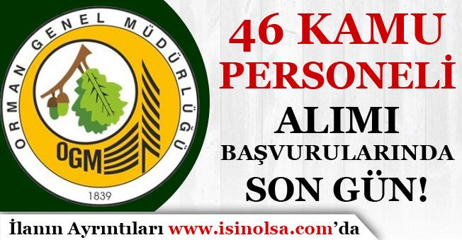 OGM 46 Kamu Personeli ( Orman Mühendisi ) Alımı Sona Eriyor!