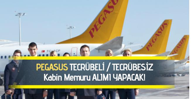 Pegasus'a Tecrübeli ya da Tecrübesi Kabin Memuru Alınacak: Yüksek Maaş!