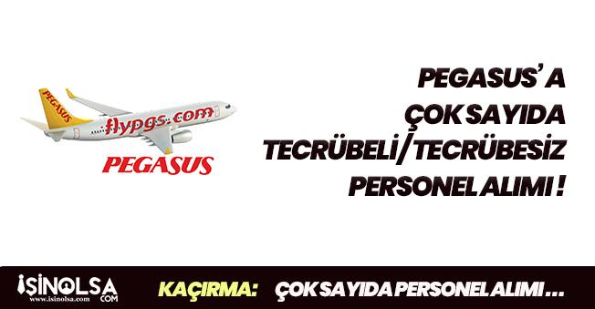Pegasus Tecrübeli ve Tecrübesiz Çok Sayıda Personel Alıyor! Yeni İlanlara Başvurular Başladı