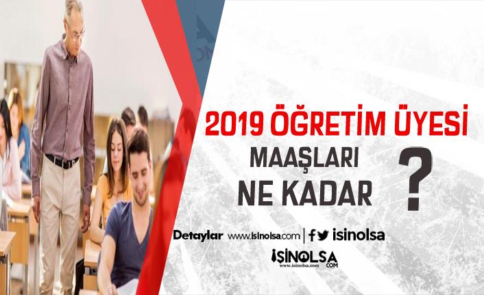 2019 Öğretim Üyesi Maaşları, Çalışma Şartları