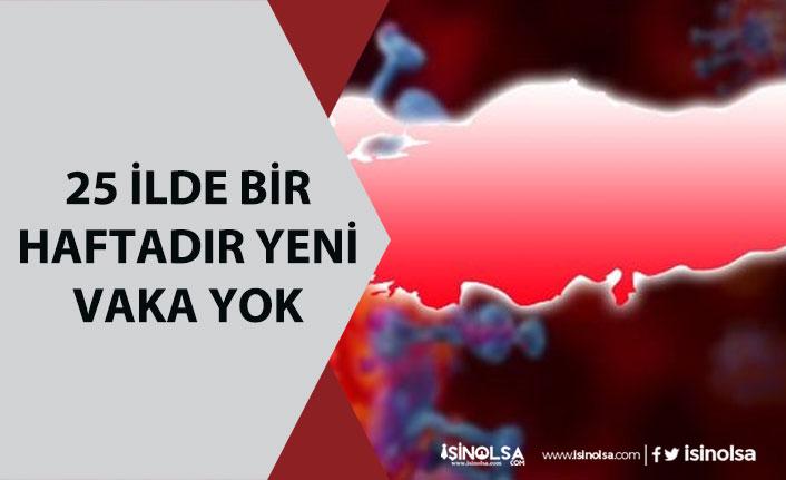 25 İlde Bir Haftadır Vaka Görülmüyor! İstanbul'da Riskli İlçeler!