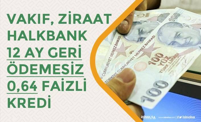 Kamu Bankaları Sosyal Hayatı Destekleme Kredisi 12 Ay Ödemesiz 0,64 Faiz Oranda! Başvuru Ne Zaman