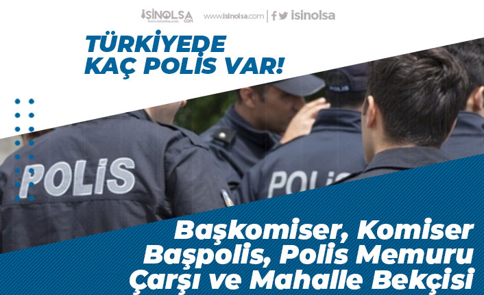 Türkiye'de Kaç Polis Var? Kaç Bekçi Var? Kişi Başına Düşen Polis Sayısı! Başkomiser, Komiser, Polis Memuru!