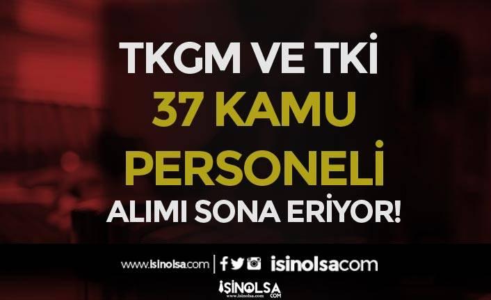 TKGM ve TKİ 37 Kamu Personeli Alımı Başvuruları Sona Eriyor!