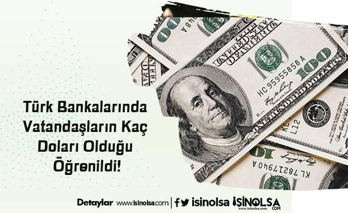 Türk Bankalarında Vatandaşların Kaç Doları Olduğu Öğrenildi!