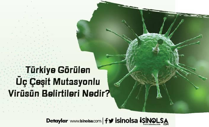 Türkiye Görülen Üç Çeşit Mutasyonlu Virüsün Belirtileri Nedir?