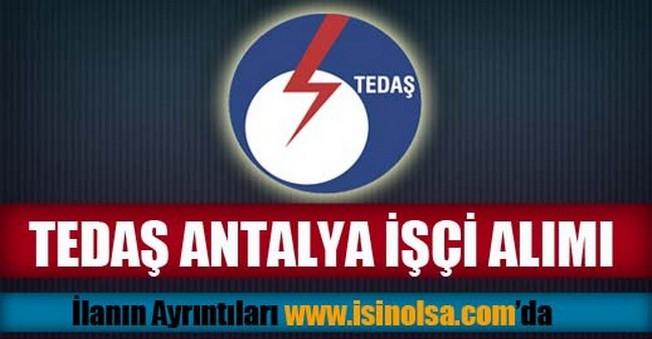 TEDAŞ Antalya İşçi Alımı