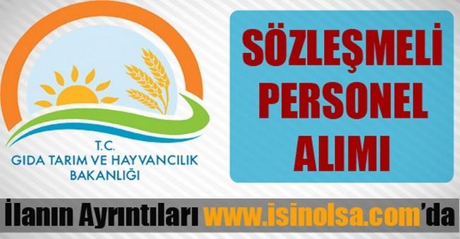 Kocaeli İl Gıda Tarım Ve Hayvancılık Müdürlüğü Sözleşmeli Personel Alımı