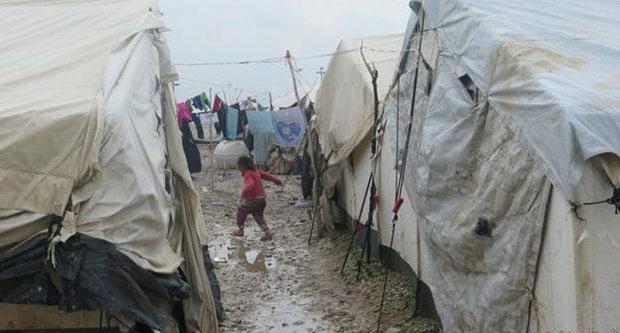 Af Örgütü: Peşmerge güçleri Arapların evlerini yıkıyor