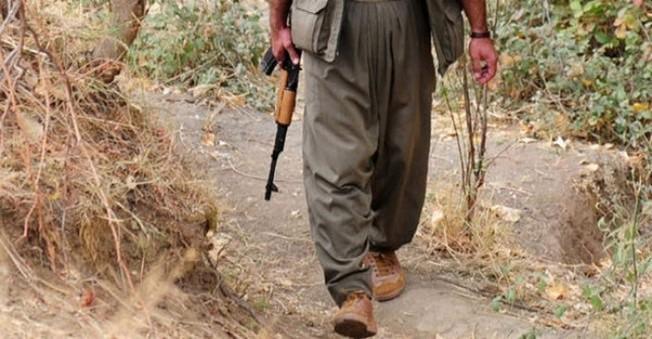 Ağrı Ve Hakkari'de 10 PKK Militanı Öldürüldü!