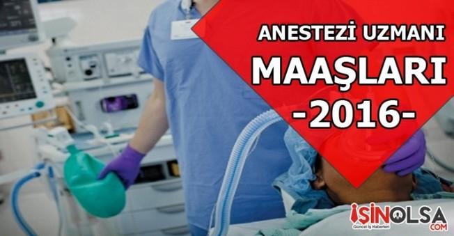 Anestezi Uzmanı Maaşları 2016