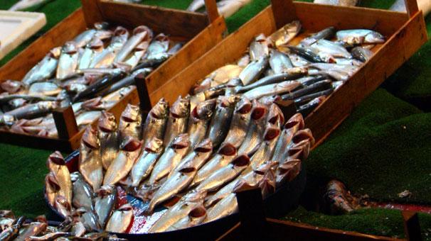 Balık Fiyatları El Yakmaya Başladı
