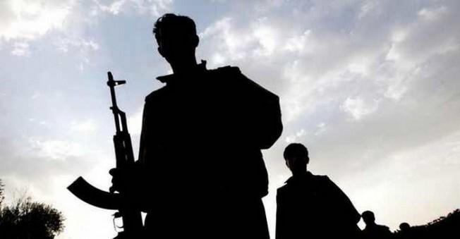 Bitlis'te PKK'ya Yönelik Hava Operasyonları Başlatıldı
