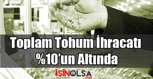 Toplam Tohum İhracatı %10'un Altında