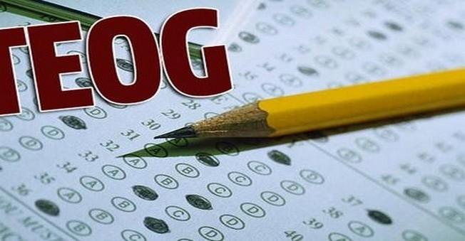 E-Okul TEOG Yerleştirme Sonuçları Sorgulama