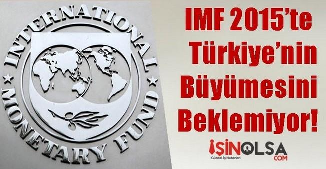 IMF 2015'te Türkiye'nin Büyümesini Beklemiyor!