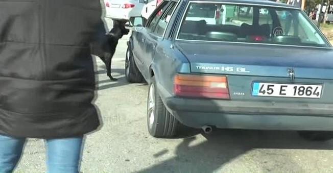 Polis, Polis'in otomobilinde 30 kilo eroin yakaladı