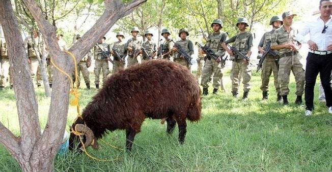 Suveren Jandarma Karakol Komutanlığı'nda Kurban Kesildi.