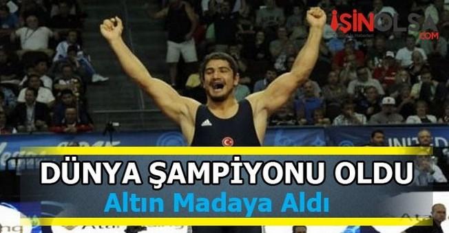 Taha Akgül Şampiyon Olarak Altın Madalya Aldı!