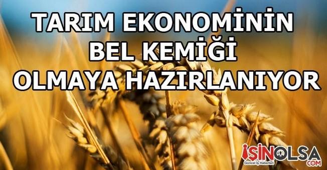Tarım Ekonominin Bel Kemiği Olmaya Hazırlanıyor