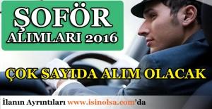 Şoför Alımları 2016