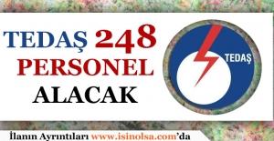 Bakan Albayrak: TEDAŞ 248 Personel...