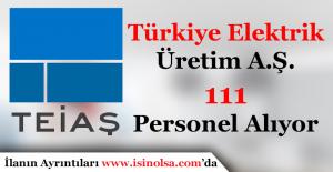 Türkiye Elektrik İletim A.Ş. Genel Müdürlüğü (TEİAŞ) 111 Personel Alımı Devam Ediyor