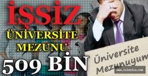 İşsiz Üniversite Mezunu Sayısı 509 bin 536 Oldu