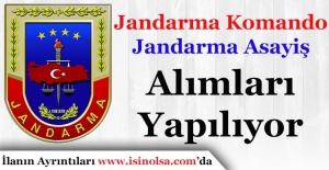 Jandarma Komando ve Jandarma Emniyet Asayiş Alımları Devam Ediyor