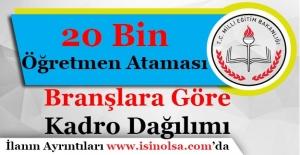 Milli Eğitim Bakanlığı 20 Bin Öğretmen Ataması Branşlara Göre Kadro Dağılımı