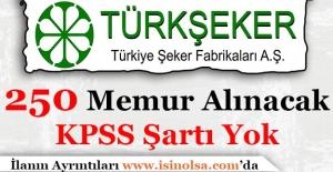 Türkiye Şeker Fabrikaları Kamuya 250 Sözleşmeli Memur Personel Alımı Yapacak