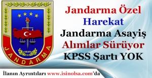 Jandarma Özel Harekat Harekat ile Jandarma Emniyet Asayiş Alımları Sürüyor