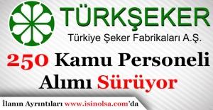 Türkiye Şeker Fabrikaları 250 Kamu Personeli Alımı Yapıyor - Başvurular Sürüyor