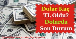 Dolar Kaç TL Oldu? Dolar Yükseliyor MuDüşüyor Mu